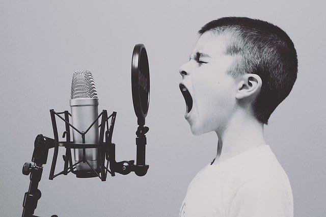 how to choose a profitable niche for a blog - child screaming into microphone